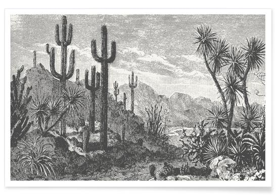 Cacti in Mountains Poster