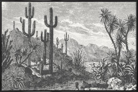 Cacti in Mountains Poster in Standard Frame