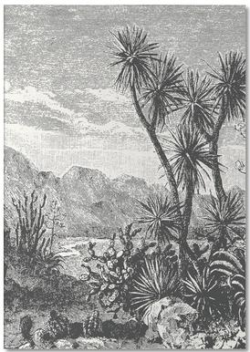 Cacti in Mountains Notizblock