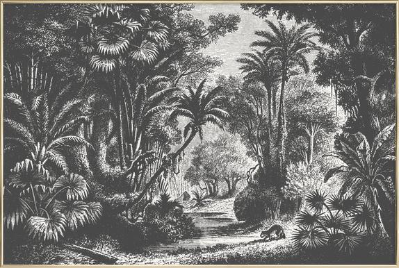 Indian Jungle -Poster im Alurahmen