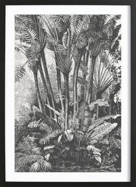 Palms in Water Poster im Holzrahmen