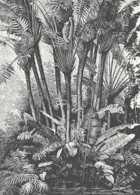 Palms in Water Leinwandbild