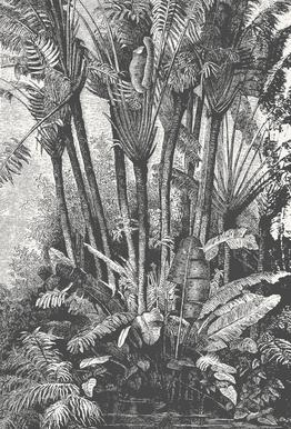 Palms in Water Acrylglasbild