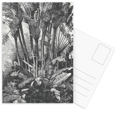 Palms in Water Postkartenset