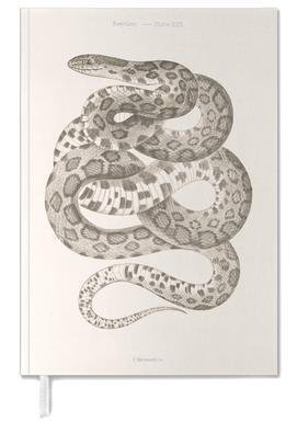 Reptiles - Plate XXII Terminplaner