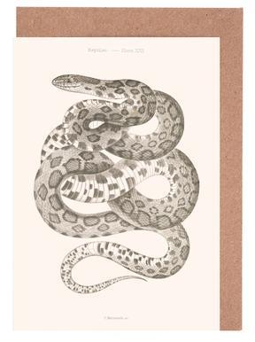 Reptiles - Plate XXII -Grußkarten-Set