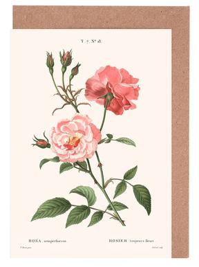 Rosier - Toujours Fleuri -Grußkarten-Set