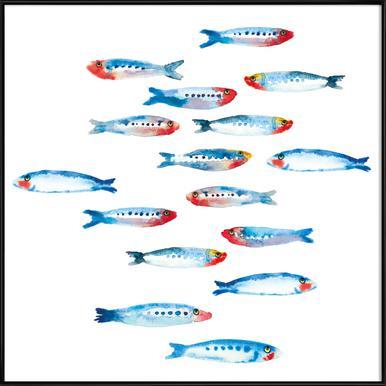 Sardines Framed Poster