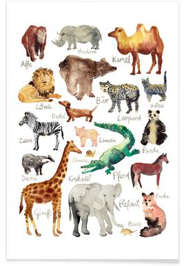 The Animal Kingdom Affiche