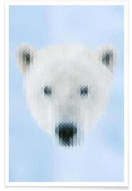 Polarbear Poster