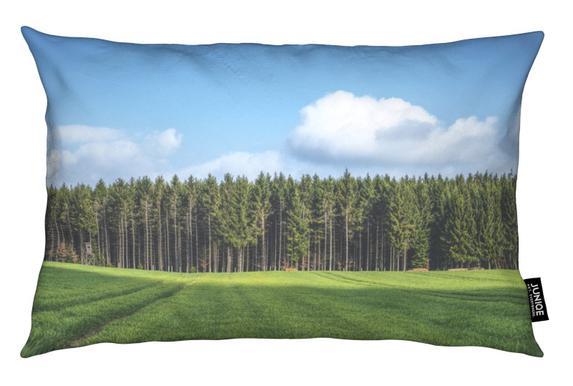 Odenwald Cushion