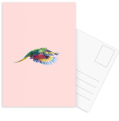 Pink Parrot 2 Set de cartes postales