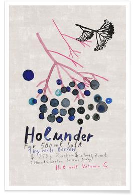 Hollunder Poster