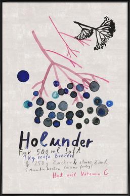 Hollunder Poster im Kunststoffrahmen