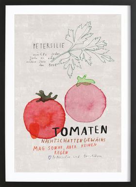 Tomate Poster im Holzrahmen