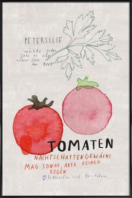 Tomate Poster im Kunststoffrahmen
