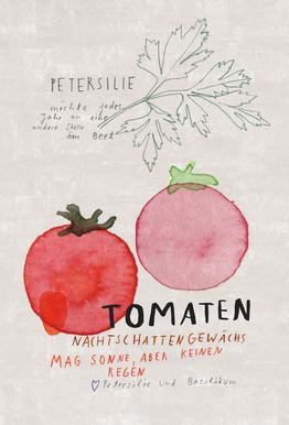Tomate -Acrylglasbild