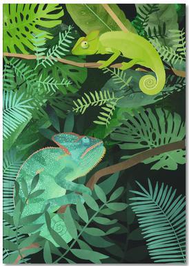 Chameleons Notitieboekje