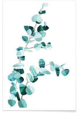 Eucalyptus Poster