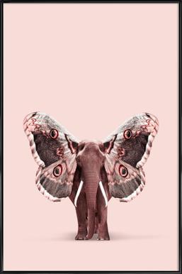 Papillophant Framed Poster