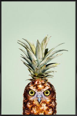 Pineapple Owl Framed Poster