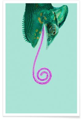 Candy Chameleon Affiche