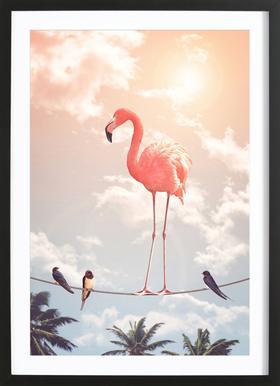 Flamingo and Friends Plakat i træramme
