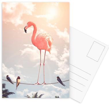 Flamingo and Friends Set de cartes postales