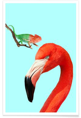 Colorful Friends Affiche