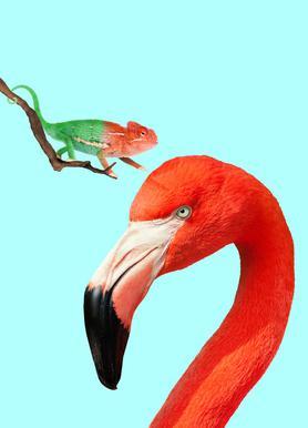 Colorful Friends canvas doek