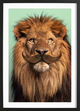 Bearded Lion Poster in Wooden Frame