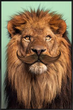Bearded Lion Poster in kunststof lijst