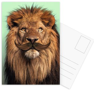Bearded Lion -Postkartenset