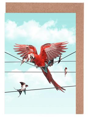 Colourful Stranger cartes de vœux