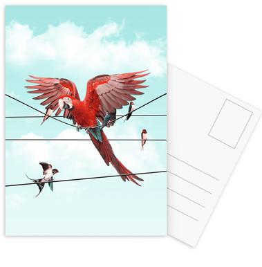Colourful Stranger -Postkartenset