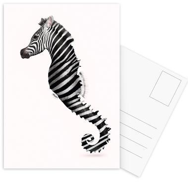 Zeahorse -Postkartenset
