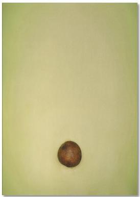 Avocado Notepad