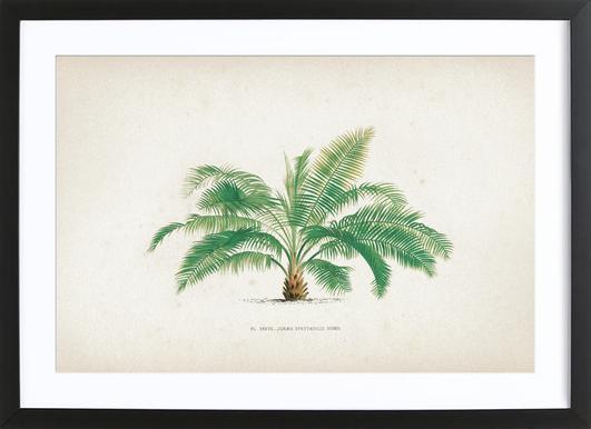 Les Palmiers 37 - Kerchove ingelijste print