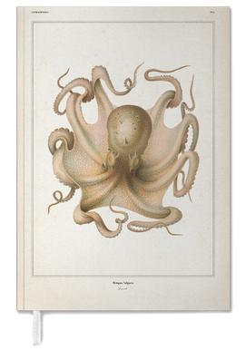 Octopus Vulgaris - Vérany Personal Planner