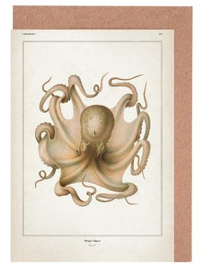 Octopus Vulgaris - Vérany Greeting Card Set