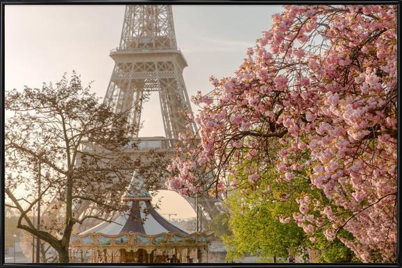 Cherry Blossom Poster im Kunststoffrahmen