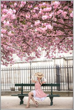 Lady at the Cherry Blossom Poster im Alurahmen