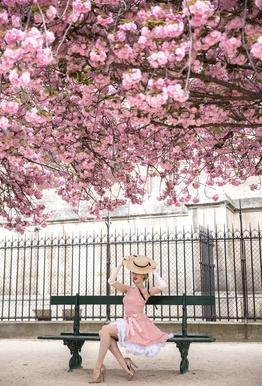 Lady at the Cherry Blossom -Alubild