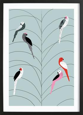 Tropicana - Birds on Branch Grey -Bild mit Holzrahmen