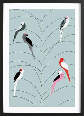 Tropicana - Birds on Branch Grey Poster in Wooden Frame