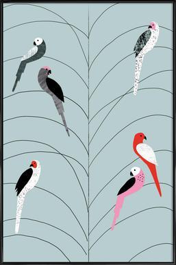 Tropicana - Birds on Branch Grey Affiche sous cadre standard