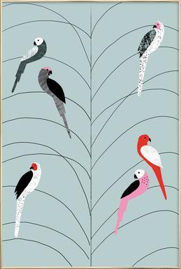Tropicana - Birds on Branch Grey Affiche sous cadre en aluminium