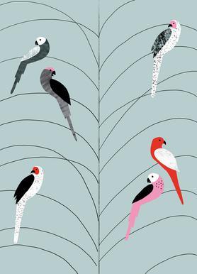 Tropicana - Birds on Branch Grey Impression sur toile