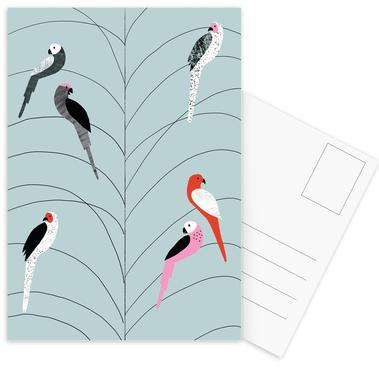Tropicana - Birds on Branch Grey Postcard Set