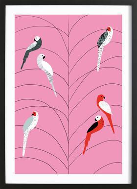 Tropicana - Birds on Branch Pink -Bild mit Holzrahmen
